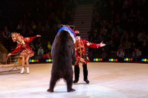 Белоснежка и семь гномов - шоу на льду