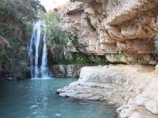 Природные красоты: Эйн-Геди и Мертвое море
