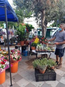 Цветочный рынок в Нетании