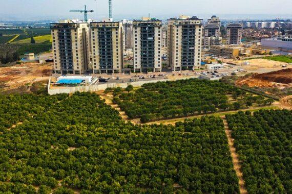 В Кфар -Йоне прекратили строить новое жилье. В чем причина?